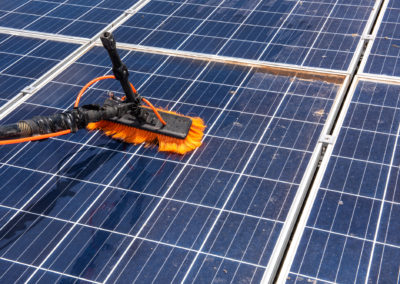 bird-proof-solar
